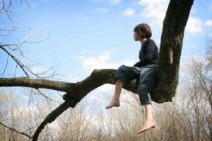 climbing-tree1
